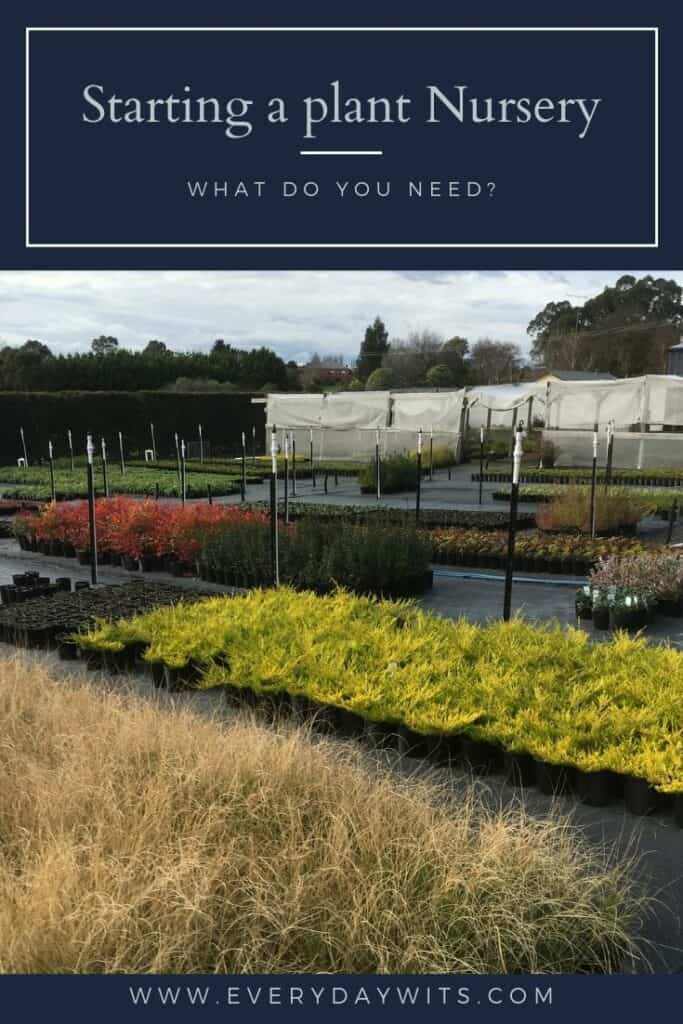 What do you need to start your own plant nursery?